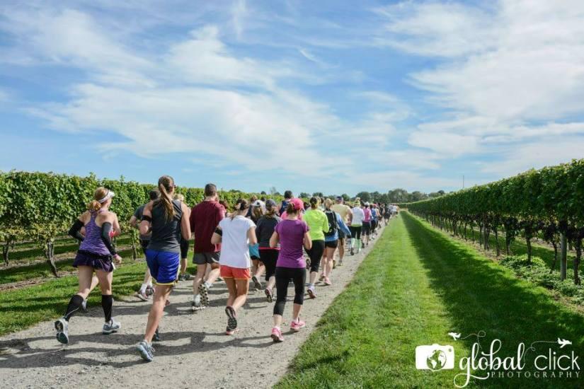 Harvest Wine Run