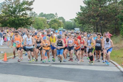 Run the Goose Gloucester